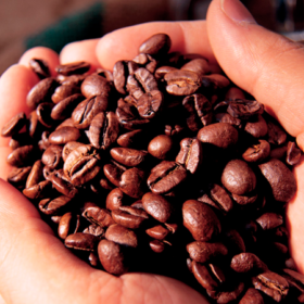 """Colombia: """"Smart Agro"""", la tecnología al servicio de la agricultura en América Latina"""